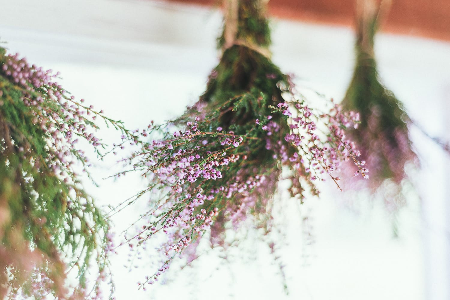hang drying wild heather