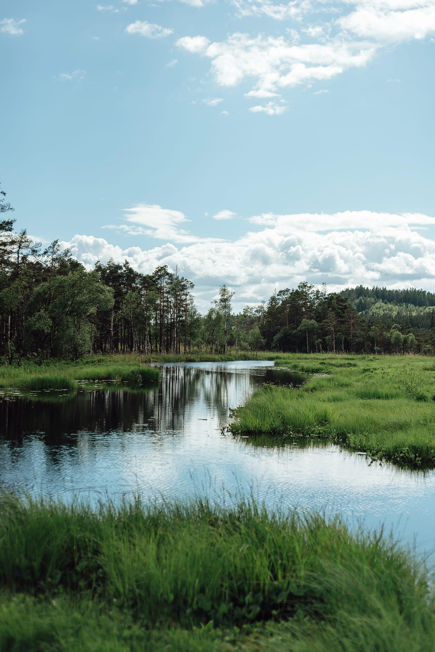 Vänga Mosse nature reserve | Photo © Rania Rönntoft | Northbound Journeys | www.northboundjourneys.comKvinnliga äventyrare Photo © Rania Rönntoft | Northbound Journeys | www.northboundjourneys.com
