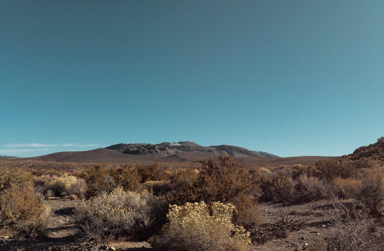 Eastern Sierra Desert