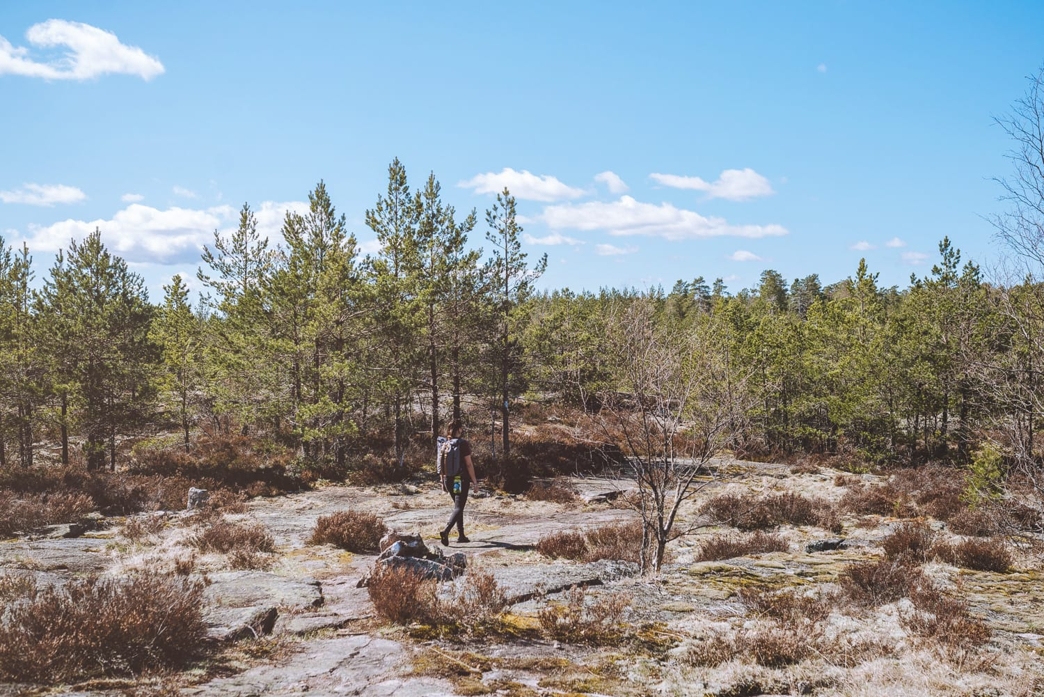 what to do during a weekend in Teijo, Finland