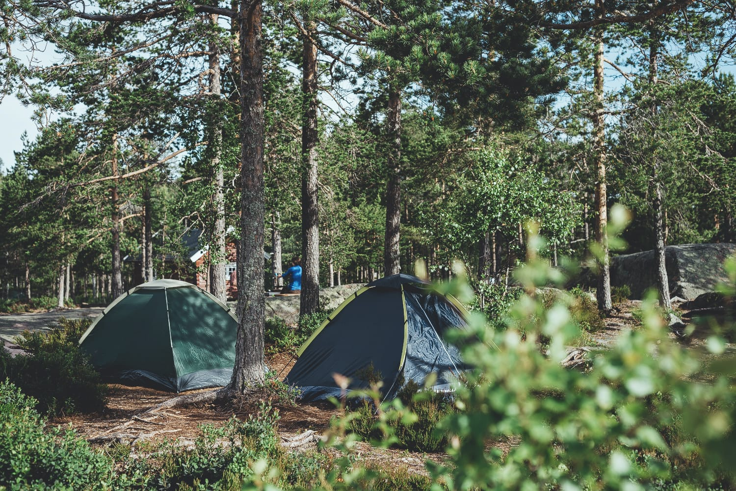 tents at a campsite in Skuleskogen