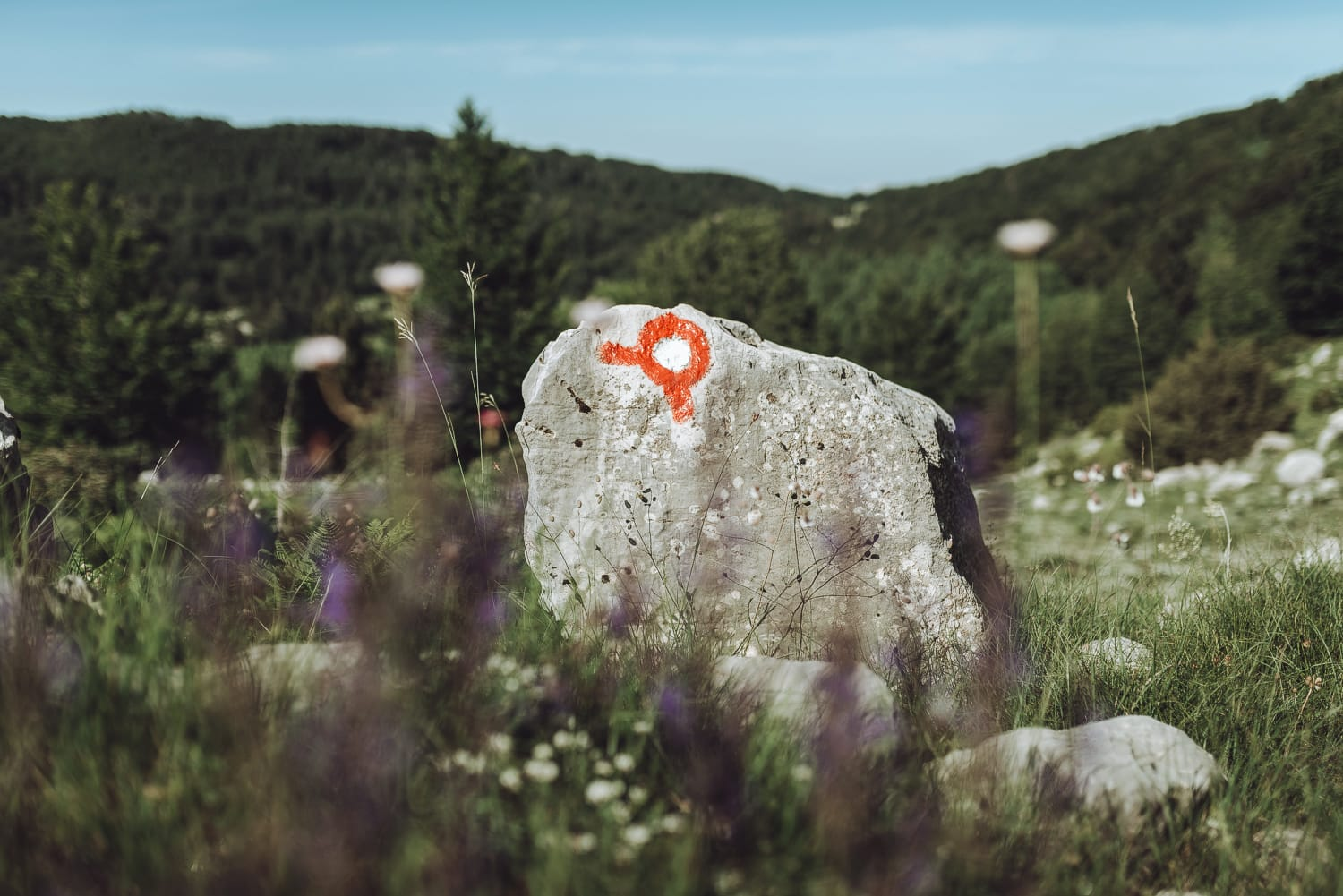 trail mark in the Orjen massif