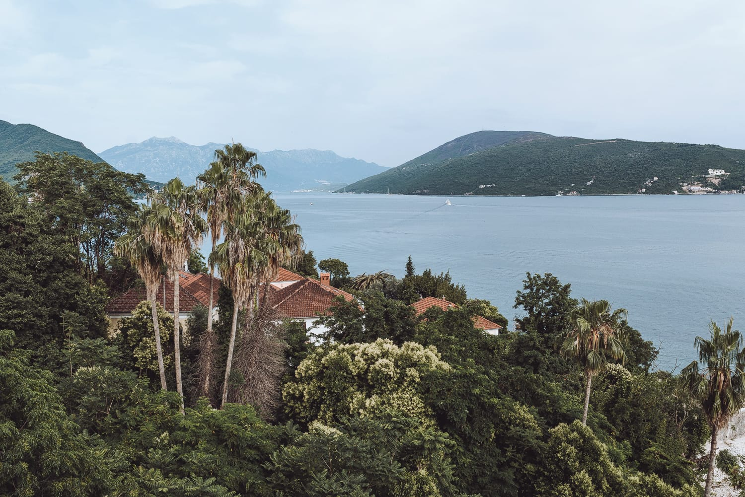 Herceg Novi, the Green City