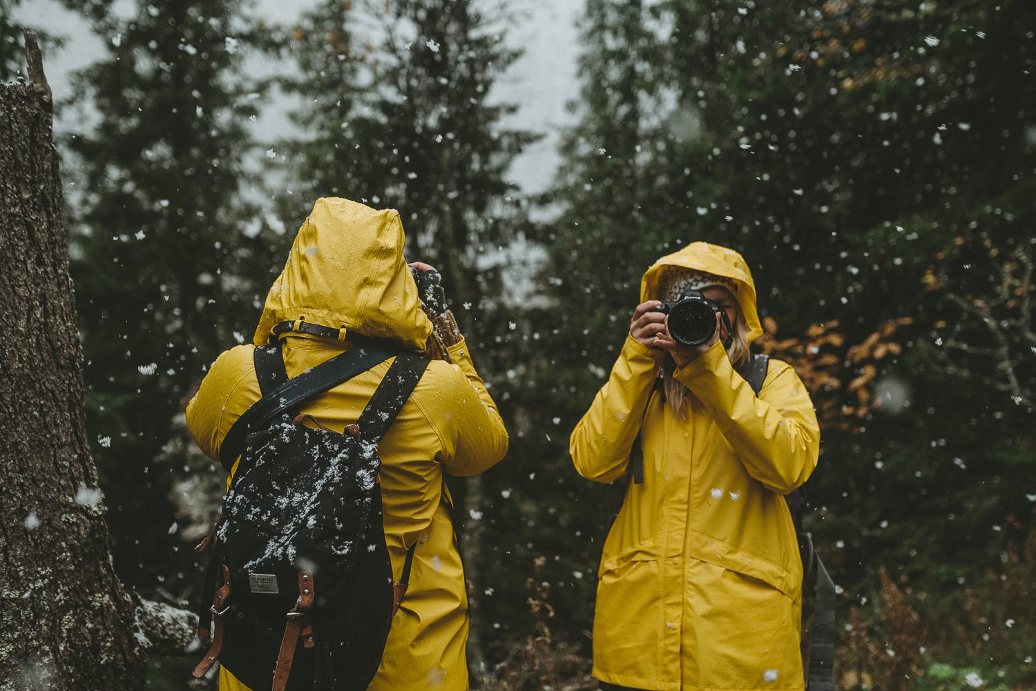 two women in yellow rain coats taking photos