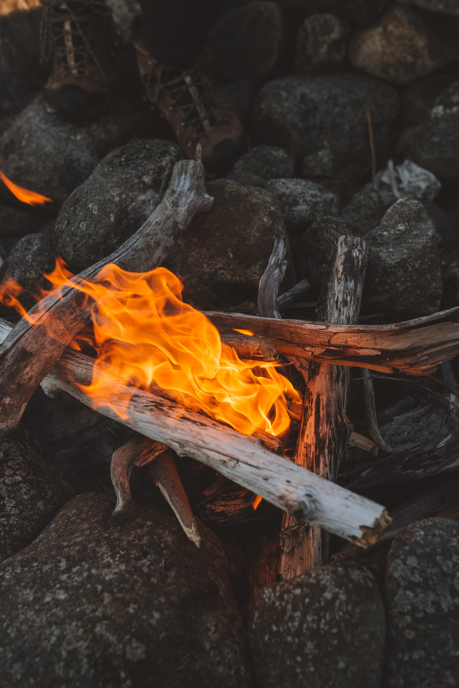 driftwood and fire