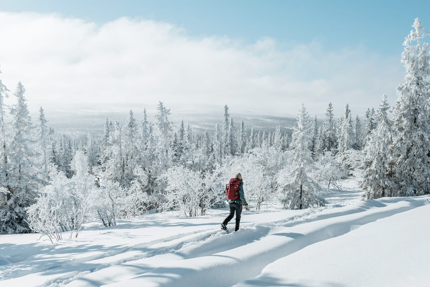 Woman snowshoeing in the forest