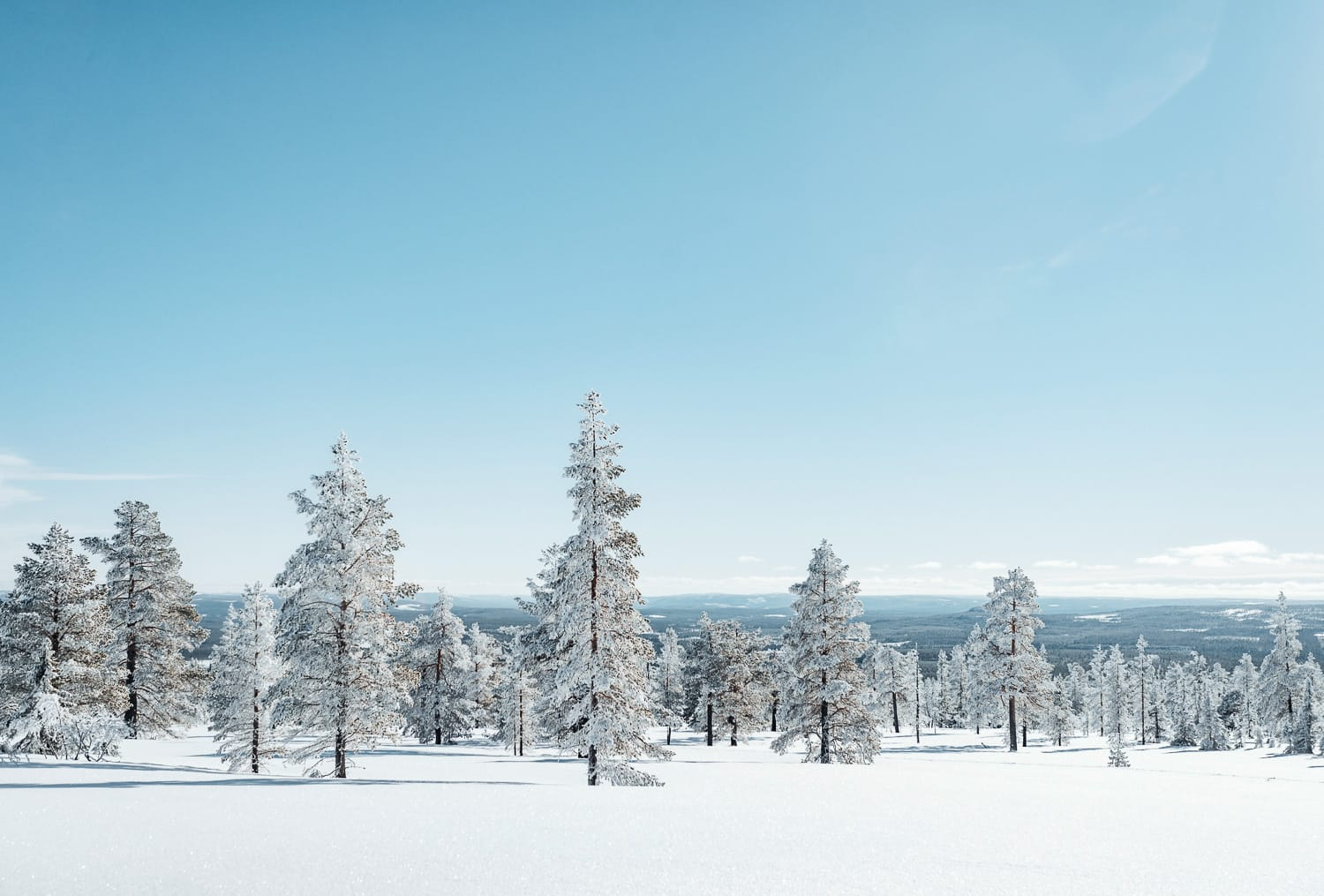 Winter landscape in northern Sweden