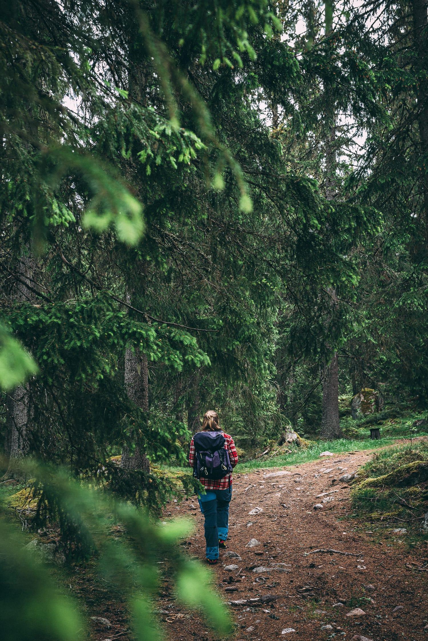 Hiking up to Ärteråsens Fäbodar