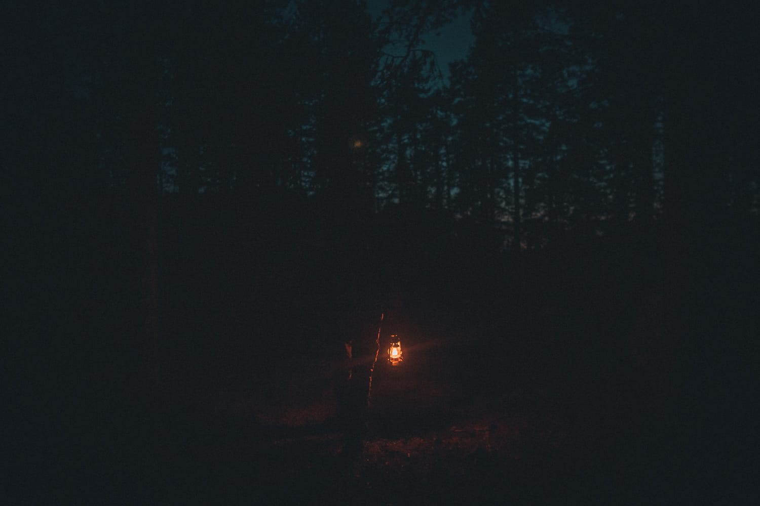 man walking into the forest holding a kerosine lamp