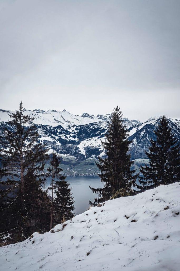 going up Mount Rigi