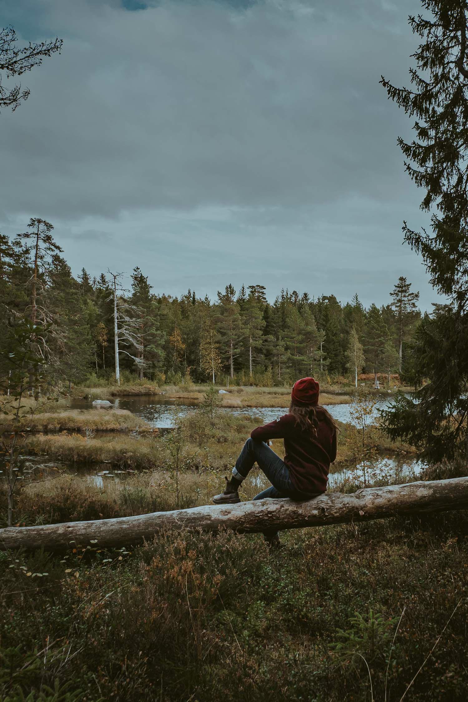 Slowcation Örebro - Ånnabodasjön