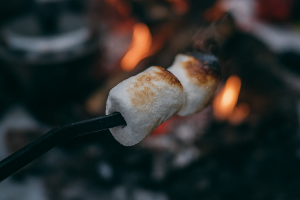 marshmallows over fire
