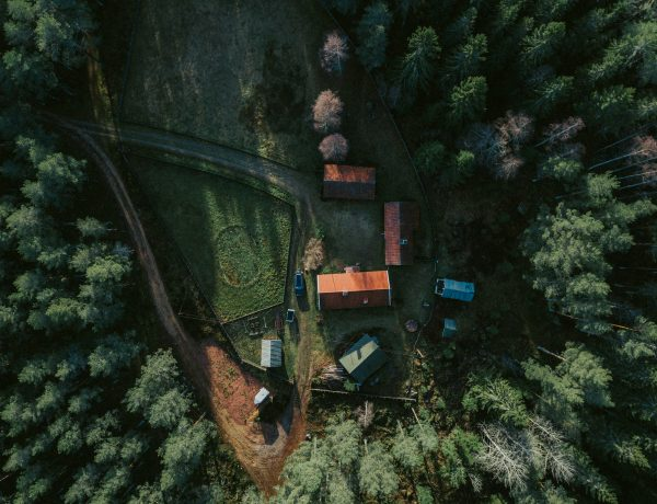 Cabin life in the Swedish forests