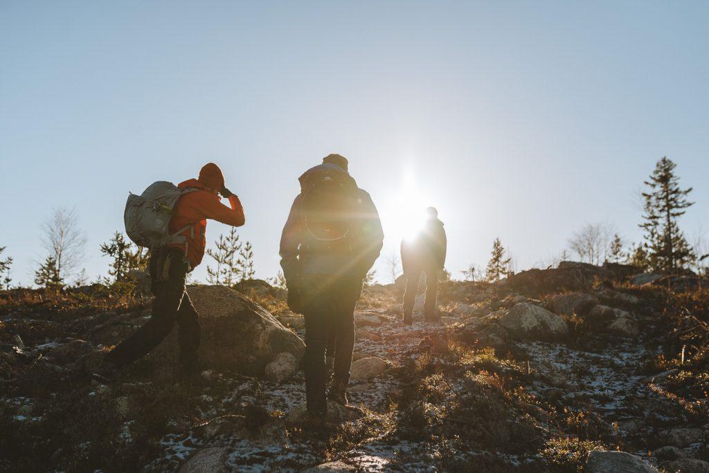 people walking in sunset