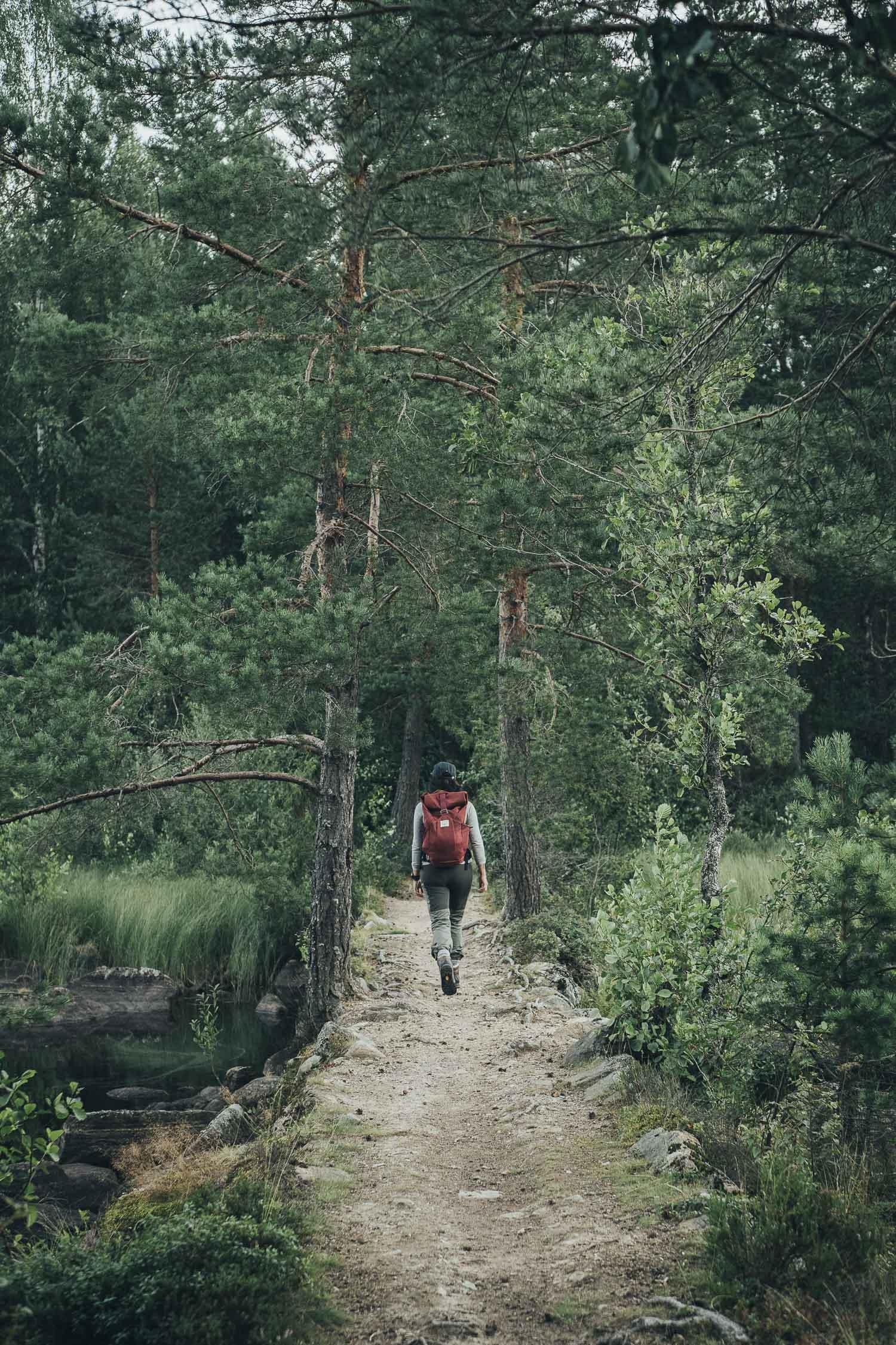 Dala Weekend - Vandra Storsjön Run