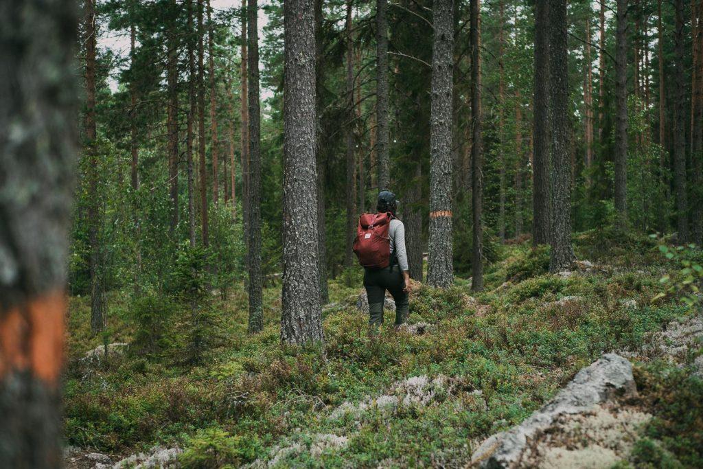 Dala Weekend - Vandra Storsjön Runt