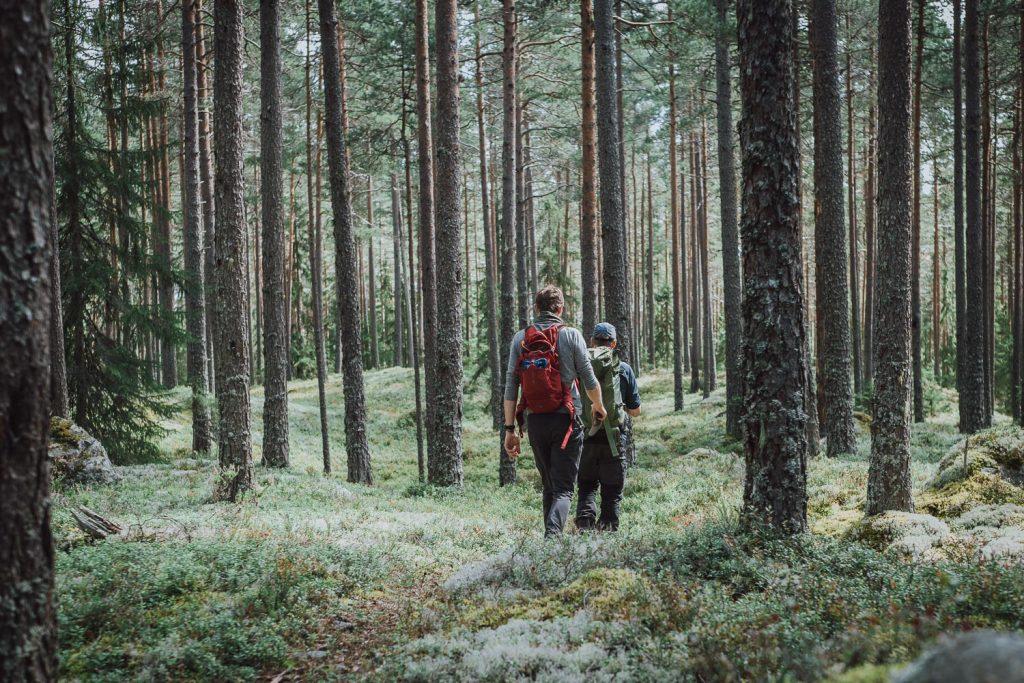 Weekend in Dalarna - Örjasänget Naturreservat